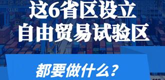 """新""""雁陣""""引領開放新格局 聚焦自貿試驗區再擴圍"""