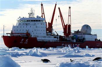 """""""雪龍""""號船邊的南極企鵝"""