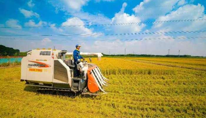 中國推出鄉村振興票據 引導鼓勵社會資本投資農業農村